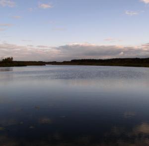Nordic Walking w gminie Ruda Maleniecka