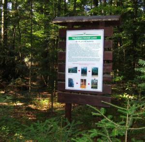 """Ścieżka przyrodniczo - leśna """"Skałki Piekło"""""""