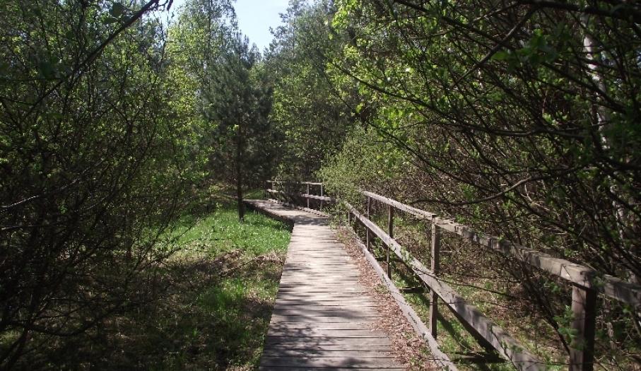 Droga do rezerwatu